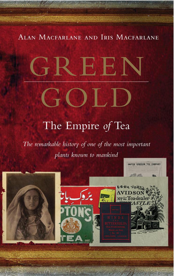 Red Tea Novel Pdf