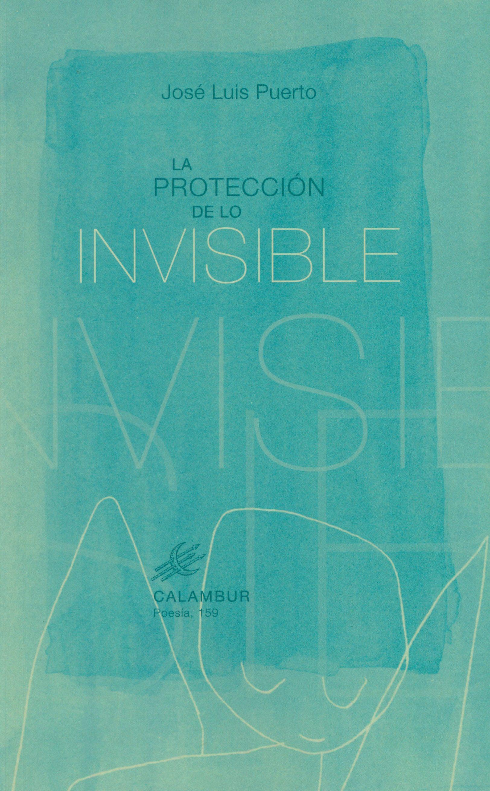 descargar LA PROTECCIÓN DE LO INVISIBLE pdf, ebook