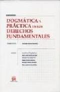 dogmatica y practica de los derechos fundamentales-9788484567011