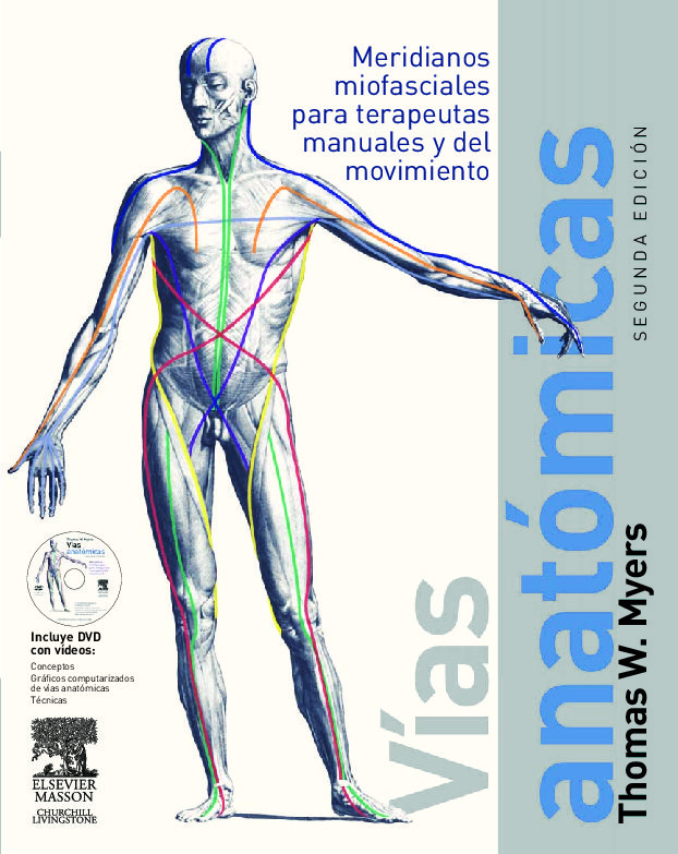 Increíble Las Vías Anatómicas Com Patrón - Anatomía de Las ...