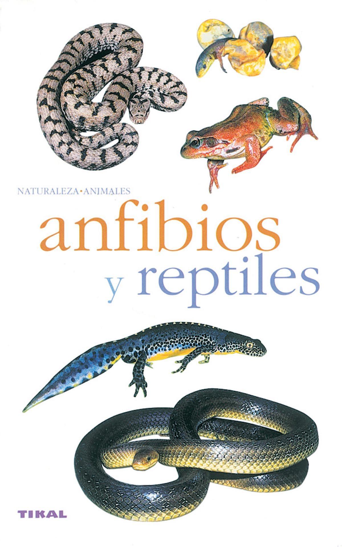 ANFIBIOS Y REPTILES DOWNLOAD