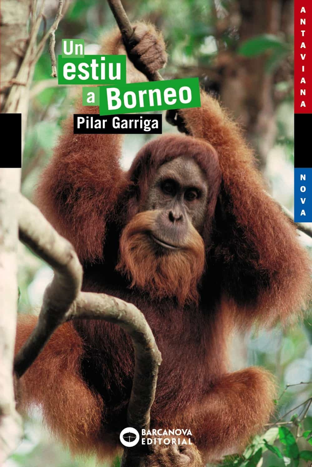 Un Estiu A Borneo por Pilar Garriga epub