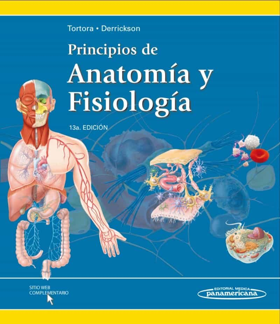 PRINCIPIOS DE ANATOMIA Y FISIOLOGIA (13ª ED) | GERARD J. TORTORA ...