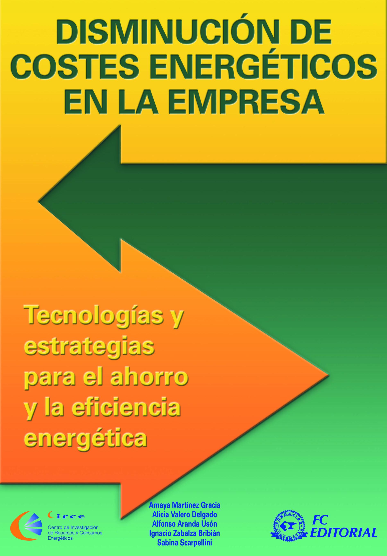eficiencia energetica disminucion de costes energeticos en la empresa tecnologias y es trategias para el ahorro y