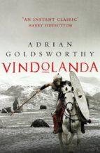 vindolanda adrian goldsworthy 9781784974701