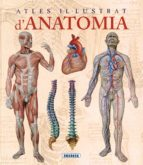 atles il·lustrat d anatomia 9788467702101