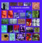 la materia sensible: tecnicas experimentales de pintura julian irujo andueza 9788489840911