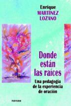donde están las raíces (ebook)-enrique martinez lozano-9788427718531