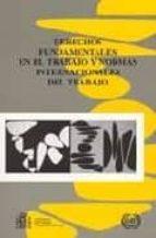 derechos fundamentales en el trabajo y normas internacionales del trabajo 9788484171331