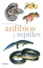 anfibios y reptiles 9788430553341