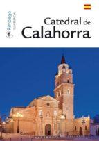 catedral de calahorra jesus de felipe castillon 9788494330551