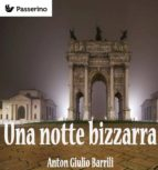 una notte bizzarra (ebook)-9788893452571