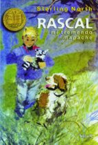 rascal, mi tremendo mapache sterling north 9788427931091