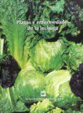 PLAGAS Y ENFERMEDADES DE LA LECHUGA - 9788484760511 - VV.AA.