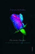 ànimes trobades (ebook)-elizabeth chandler-9788466415491