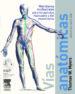 VIAS ANATOMICAS (INCLUYE DVD) (2ª ED.) T. W. MYERS