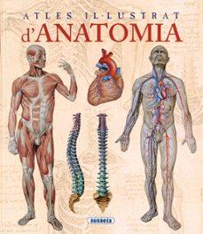 Descargar libros electrónicos gratis kindle pc ATLES IL·LUSTRAT D ANATOMIA de  FB2 PDB iBook