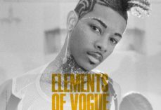 Ebook descargas gratuitas epub ELEMENTS OF VOGUE. UN CASO DE ESTUDIO DE PERFORMANCE RADICAL in Spanish