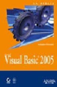 Mrnice.mx Visual Basic 2005 Image