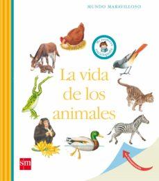 Javiercoterillo.es La Vida De Los Animales Image