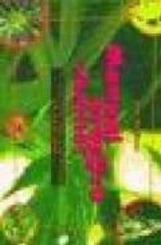 Descargador de libros de Google en línea MANUAL PRACTICO PARA SIBARITAS: EL CULTIVO DEL CANNABIS EN EXTERI OR (Literatura española) MOBI PDF 9788488455871